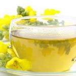 Divizma čaj lekovita svojstva i priprema