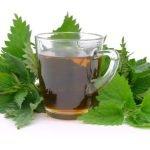 Za šta je dobar čaj od koprive?