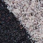 Crni pirinač nutritivne vrednosti, koristi za zdravlje