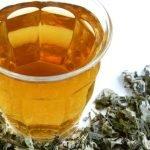 Lekovita biljka pelin – čaj od pelina za želudac, protiv crevnih parazita….