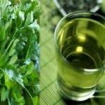 Čaj od peršuna  priprema i upotreba za zdravlje, mršavljenje, celulit…