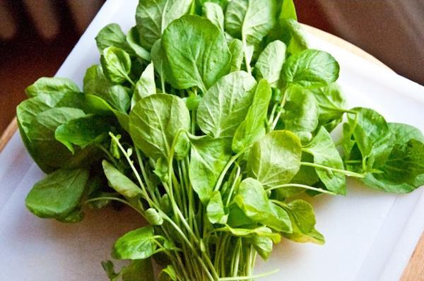 potocarka salata recept