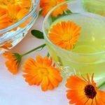 Čaj od nevena priprema i upotreba
