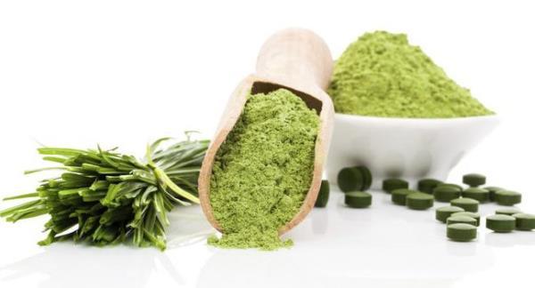 spirulina alga