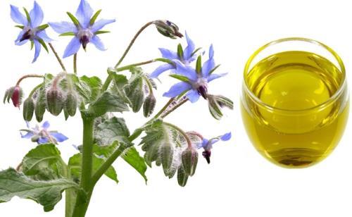 ulje borazine