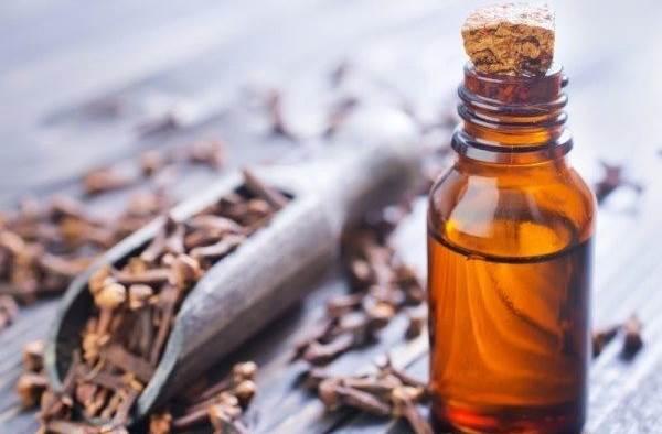 ulje karanfilica nacin upotrebe