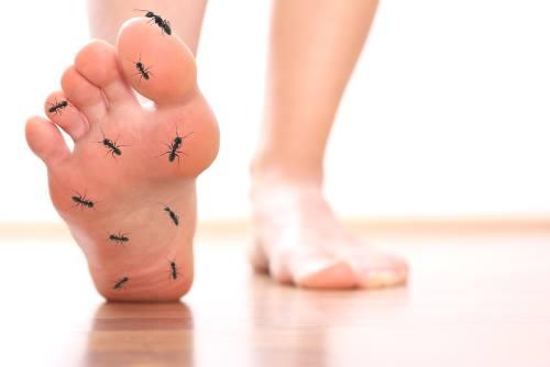 neuropatija nogu