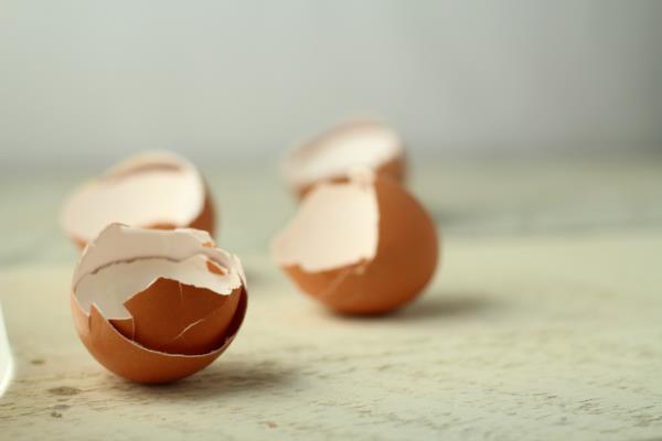 ljuske od jaja za kosti