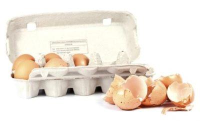ljuske od jajeta